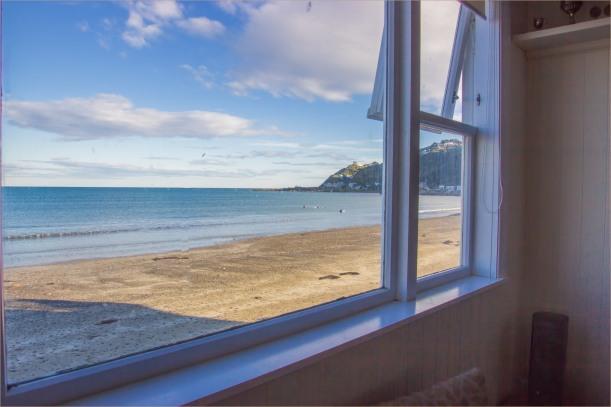 lyall bay window-2