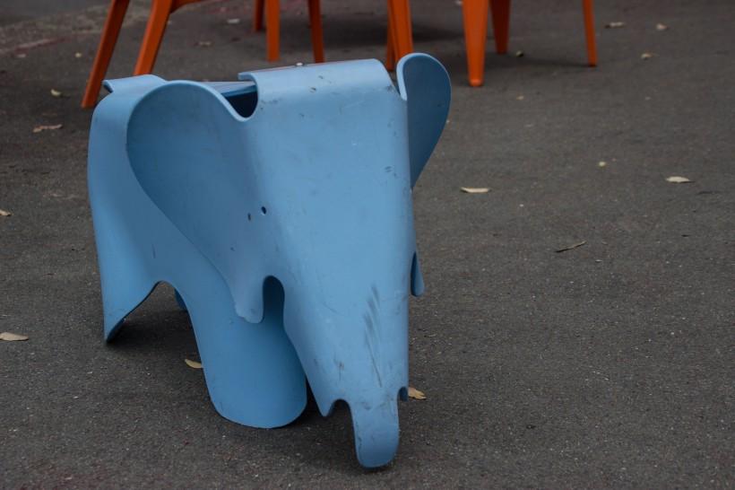 odd elephant