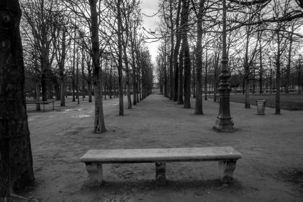 black and white benches