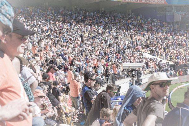 cricket crowd desaturated