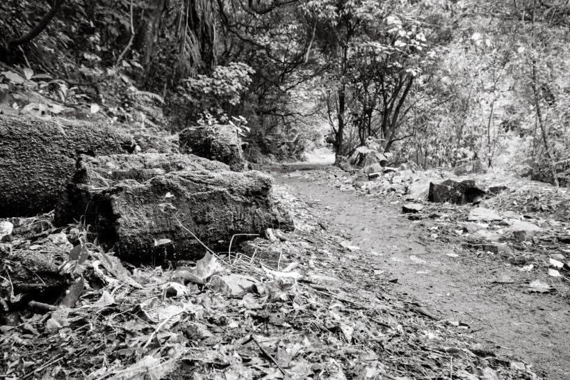 black and white ground