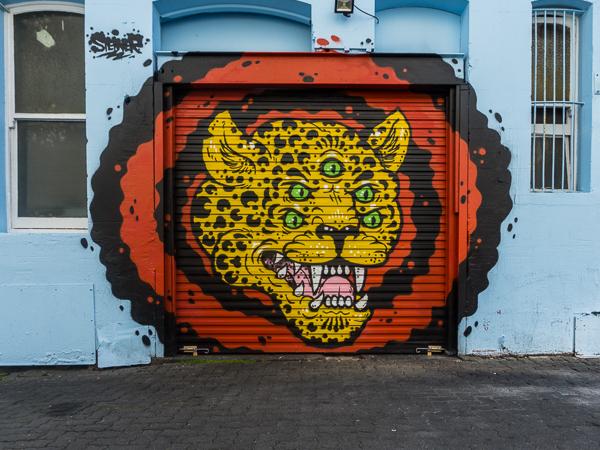tiger doors